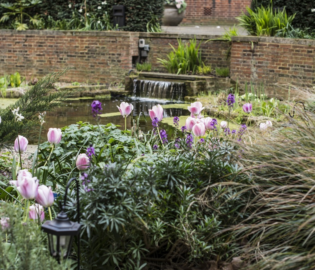 BMA House garden summer pond